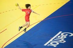 手球体育。 免版税图库摄影