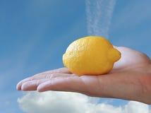 手用柠檬 库存照片