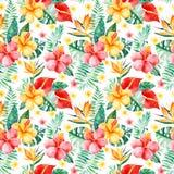 手画与多彩多姿的花,热带叶子,在白色背景的分支的水彩无缝的样式 向量例证