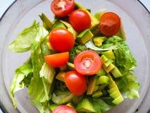 手紧压在素食沙拉的石灰由鲕梨、蕃茄、黄瓜和蓬蒿被做 库存照片