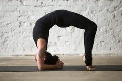 年轻手肘桥梁姿势的,顶楼backgroun信奉瑜伽者可爱的妇女 图库摄影