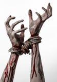 手跳起,血淋淋的手,泥,绳索,在白色背景,隔绝,绑架,蛇神,邪魔 免版税库存照片