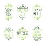 手速写的印刷元素 农产品标签 免版税图库摄影