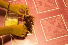 手酥脆切的猪肉 库存图片