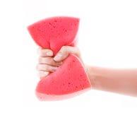 手采取一块桃红色海绵 免版税库存照片