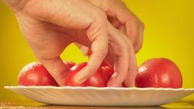 手采取与水滴的新鲜的蕃茄从板材的 营养的概念 在黄色的孤立 股票录像
