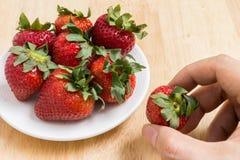 手采摘草莓 库存照片