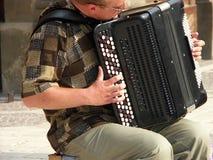手风琴球员 免版税库存照片