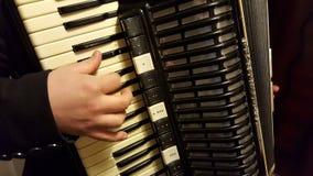 手风琴球员 图库摄影