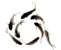 手画中国鲤鱼 免版税库存照片