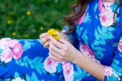 手给充满爱的一朵野花 浪漫史,感觉 免版税库存图片