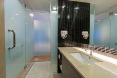 洗手间和卫生间 库存图片
