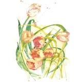 手画水彩花和绽放 皇族释放例证