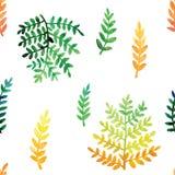 手画水彩离开无缝的花卉样式传染媒介背景 叶子和花植物的样式 免版税库存照片