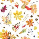 手画秋叶的水彩无缝的样式 免版税库存图片