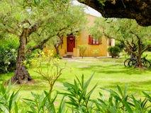 扎金索斯州海岛,希腊, 2016年5月, 30日:在橄榄tr中的家庭经典黄色红色希腊别墅公寓旅馆别墅房子村庄 库存图片