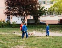 打与他们的爱犬狗的年轻男孩橄榄球赛 库存照片