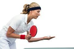 打乒乓球的女运动员 库存图片