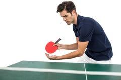 打乒乓球的确信的男性运动员 库存照片
