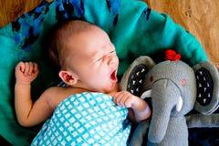 打呵欠在被编织的篮子的新的男婴 免版税库存照片