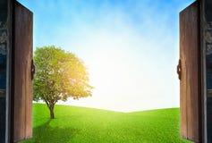 打开与室外生态概念的木窗口 免版税库存图片