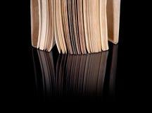 打开与被反射的葡萄酒页的旧书 免版税库存照片