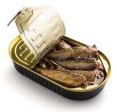 打开与西鲱的锡罐 免版税库存照片