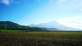 打开与Mt的领域 在后面的Canlaon 免版税库存照片