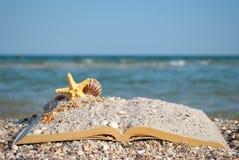 打开书沙子贝壳海星海滩海岸蓝天白色波浪夏天周末假期 库存照片