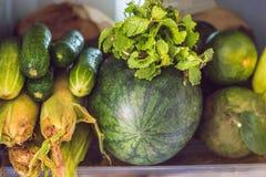 打开冰箱充满新鲜的水果和蔬菜,未加工的食物概念,健康吃概念 免版税库存照片