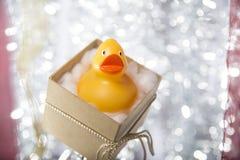 打开圣诞节有橡胶鸭子的礼物盒 免版税库存图片