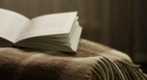 打开在一条毯子的书,在窗口对面 免版税库存照片