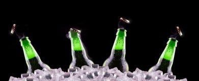 打开在冰的湿啤酒瓶 免版税库存照片