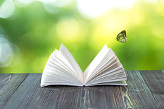 打开在木板条的书在抽象光 免版税库存照片