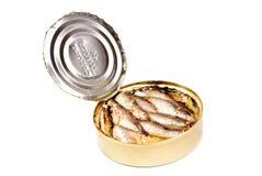 打开在白色隔绝的罐西鲱 免版税图库摄影