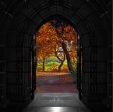 打开在美丽,五颜六色的森林上的教会门 库存图片