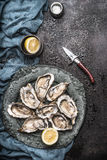 打开在葡萄酒板材的未加工的牡蛎用柠檬和牡蛎刀子,与水下落的黑暗的土气背景 免版税库存照片