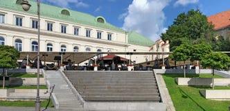 打开夏天咖啡馆在Gediminas国王街道的Somersby萍果汁 图库摄影