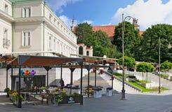 打开夏天咖啡馆在Gediminas国王街道的Somersby萍果汁 免版税图库摄影