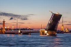 打开宫殿桥梁,彼得保罗大教堂不眠夜 彼得斯堡圣徒 免版税库存照片