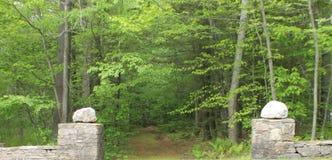 打开对道路的石墙在森林 免版税库存照片