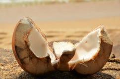打开放置在沙子的椰子 免版税库存图片