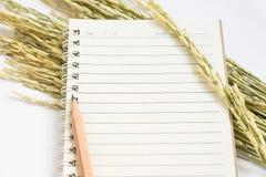 打开有棕色铅笔和干水稻的螺纹笔记本 库存照片