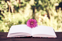 打开有空的页的笔记本在自然绿色背景 葡萄酒设色 图库摄影