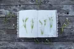 打开有鞋带的葡萄酒笔记本和在木bac的白色颜色 库存照片
