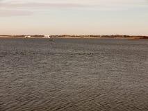 打开水表面海波纹夏天春天风景hor海湾  免版税库存照片