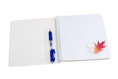 打开笔记本、圆珠笔和秋天叶子在轻的背景 库存照片
