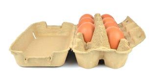 打开箱鸡蛋 免版税图库摄影