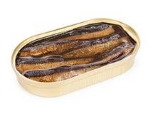 打开罐头在被隔绝的油的沙丁鱼 免版税库存图片