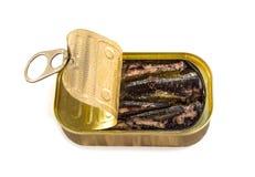 打开锡罐用沙丁鱼被隔绝在白色 免版税库存图片